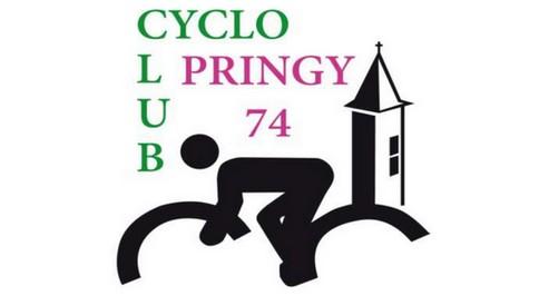96_Logo_Pringy